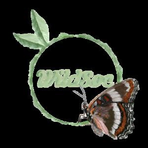 Wildsoc logo no bg
