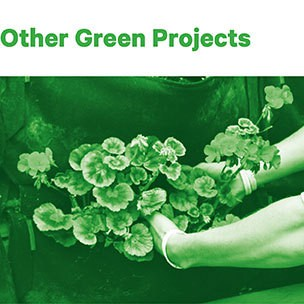 Other green projects
