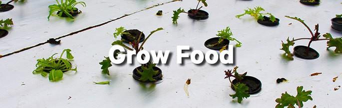 Grow food banner