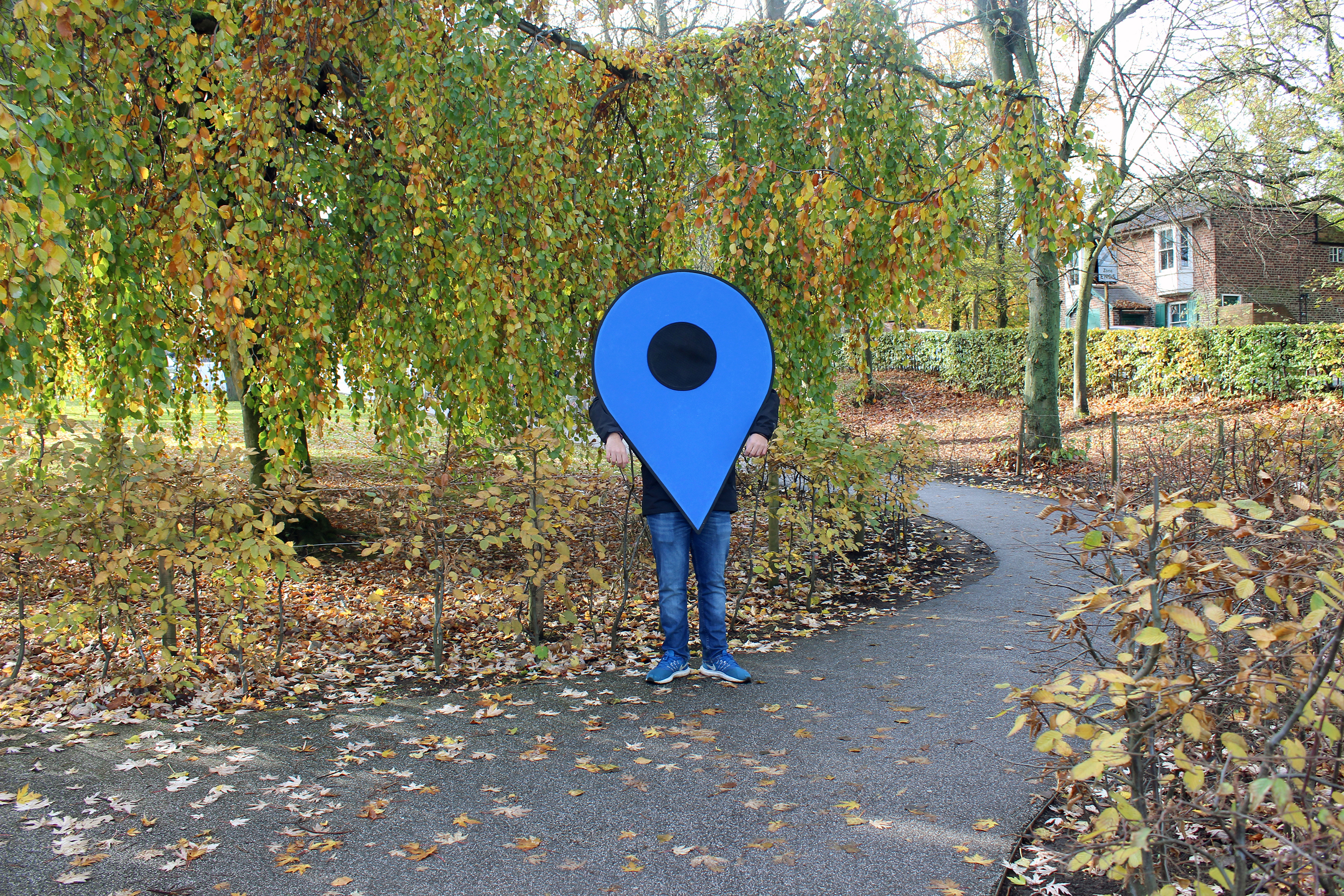 Blue pin stood within autumnal treest