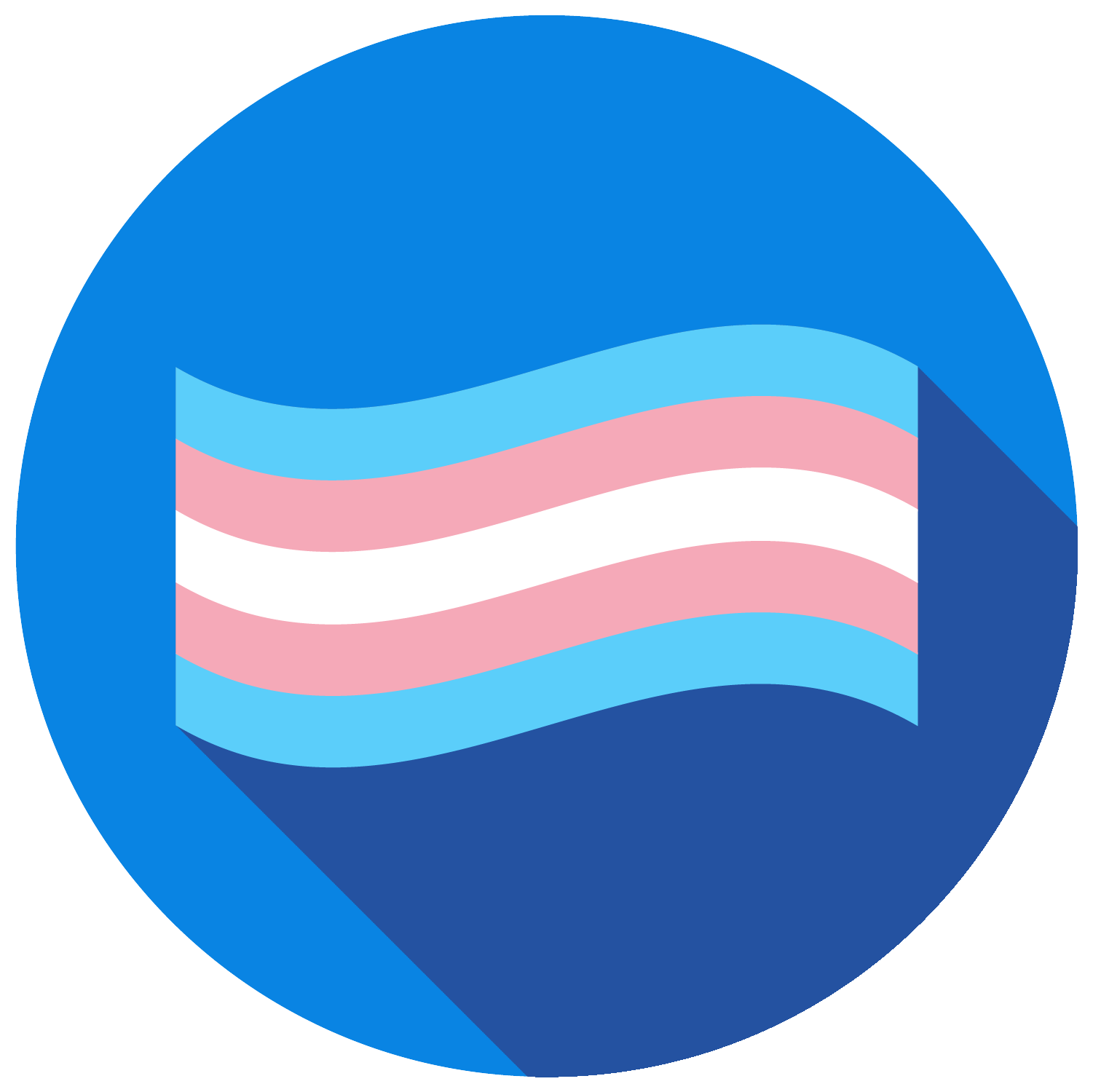 Trans Students Network