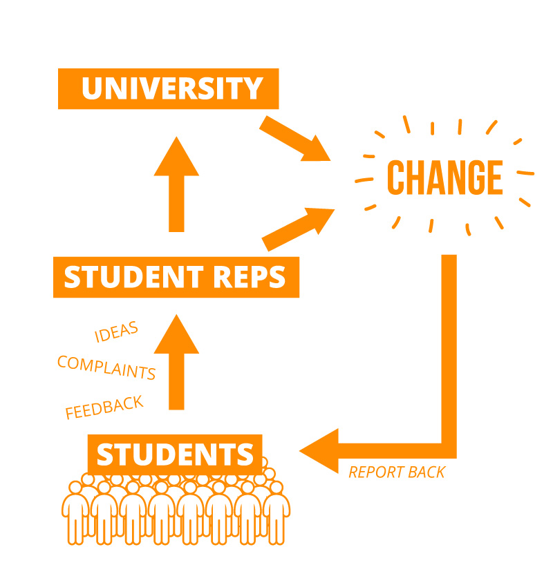 Student Reps feedback cycle