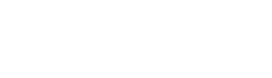 University of Bristol logo white