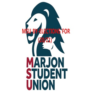 2017 msu logo 20 to 21
