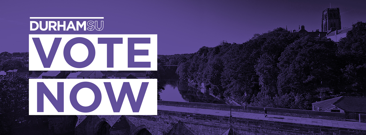 Voting homepage banner