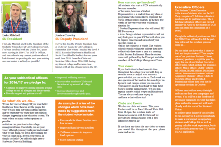 Induction leaflet middle pages