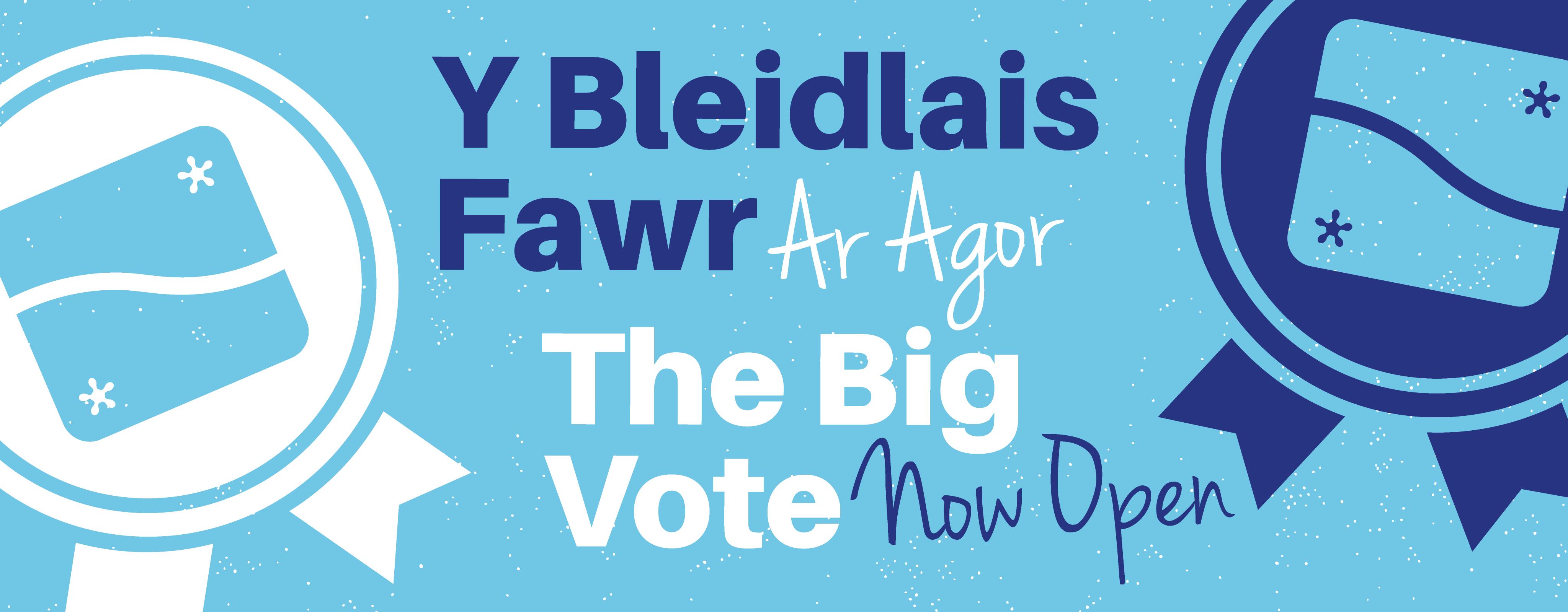 Website banner voting open thebigvote