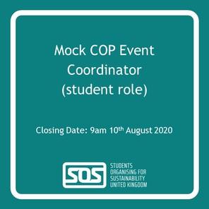 Mock cop vacancy