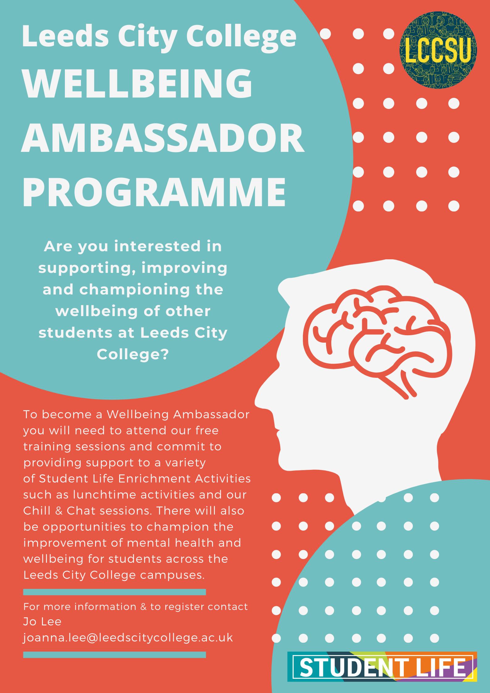 Wellbeing ambassador programme poster
