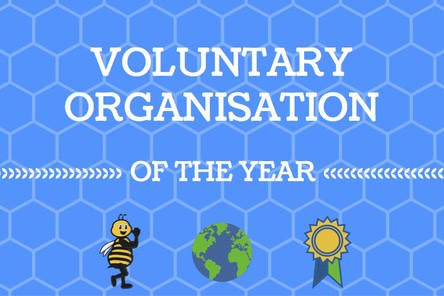 Vol organisation of the year