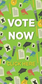 Vote now web banner 06