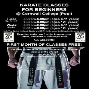 A4 karate poster