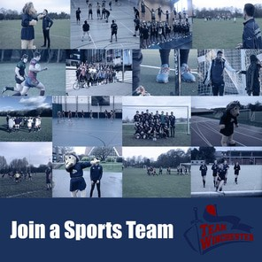 Join a sports team icon
