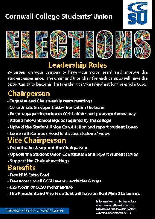 Elections roles 2016