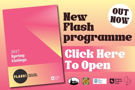 Flash programme out now feature box 01