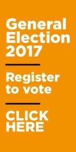 General election homepage ad