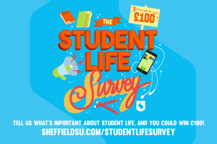 Student life survey feature box