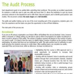 Auditprocess