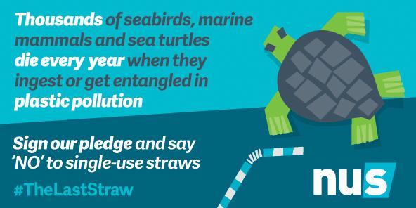 Last straw marine life 592x296