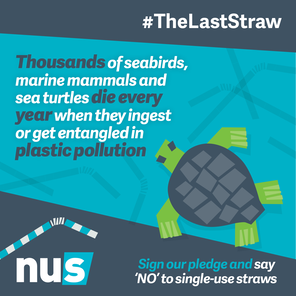 Nus the last straw marine life