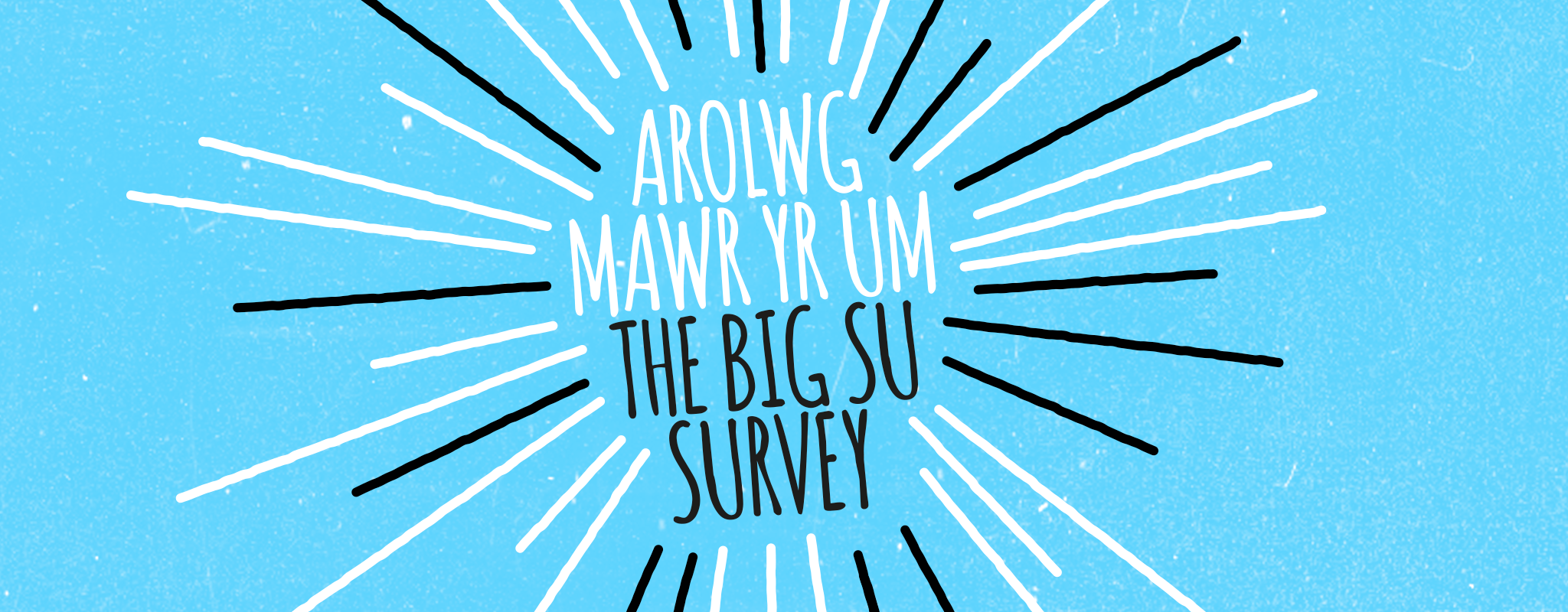 Big su survey banner blue