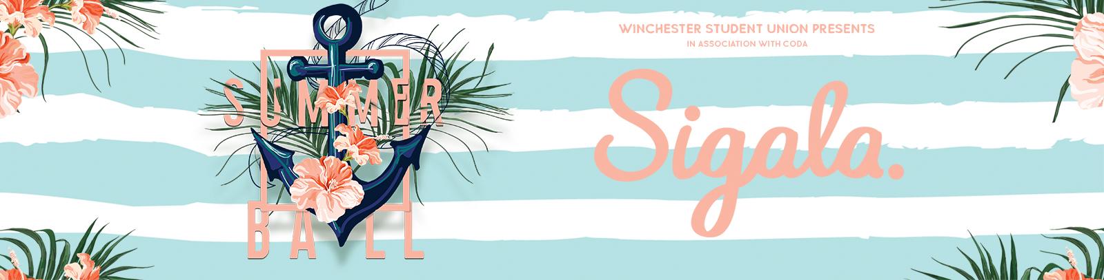 Summer ball 19 website banner
