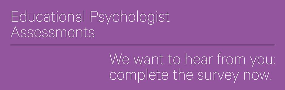 Educational psychologist banner