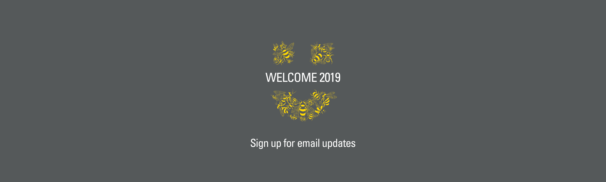 Header welcome email sign up