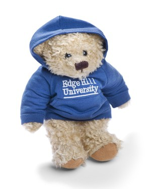 Small teddy 1