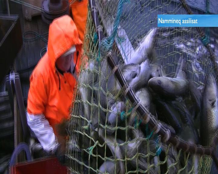 Fremgang i fiskeriet