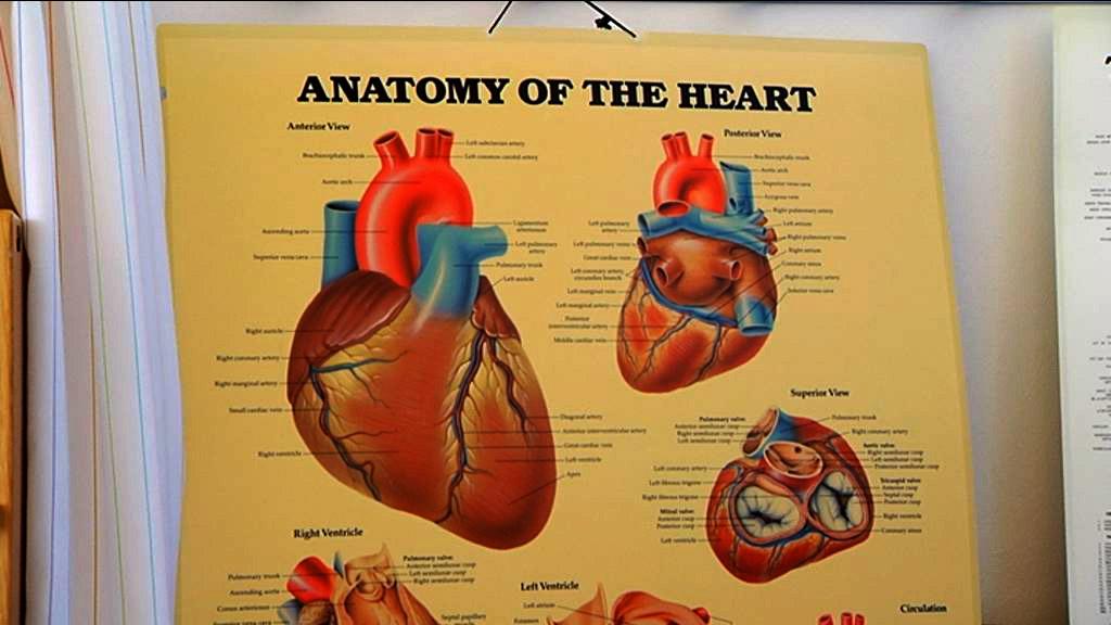 Flere og flere har hjertesygdomme