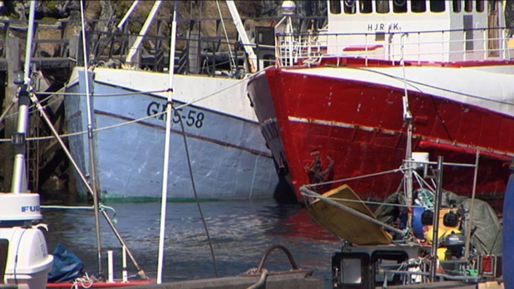 Makrelkrigen under lup
