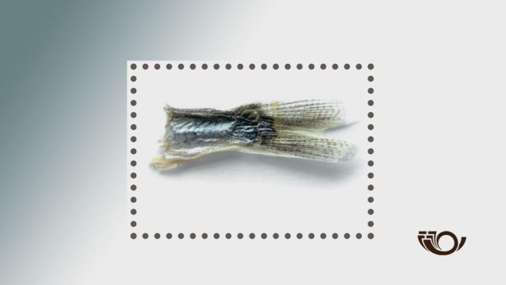 Mattak på frimærke