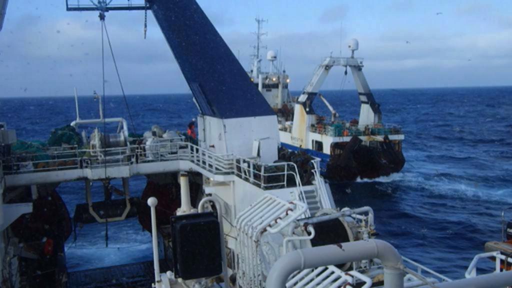 Rekordoverskud i Polar Seafood