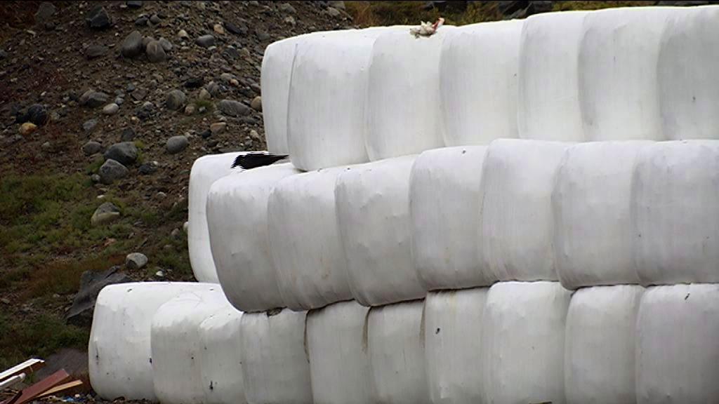 Affald i Paaamiut
