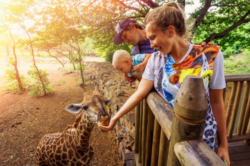 Safari: scegliere l'attrezzatura e l'abbigliamento giusto