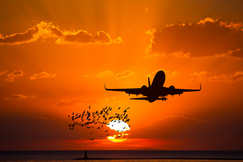 Come liberarsi delle orecchie tappate dopo un volo