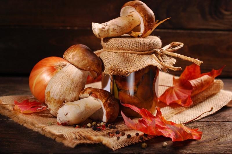 Come pulire e conservare i funghi porcini