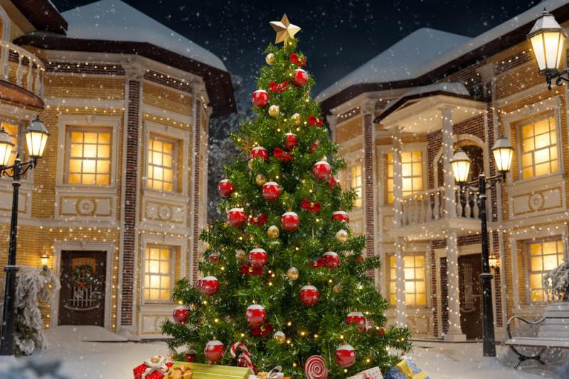 Come addobbare l'albero di Natale all'esterno