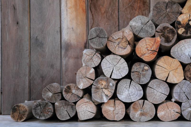 Come asciugare la legna umida