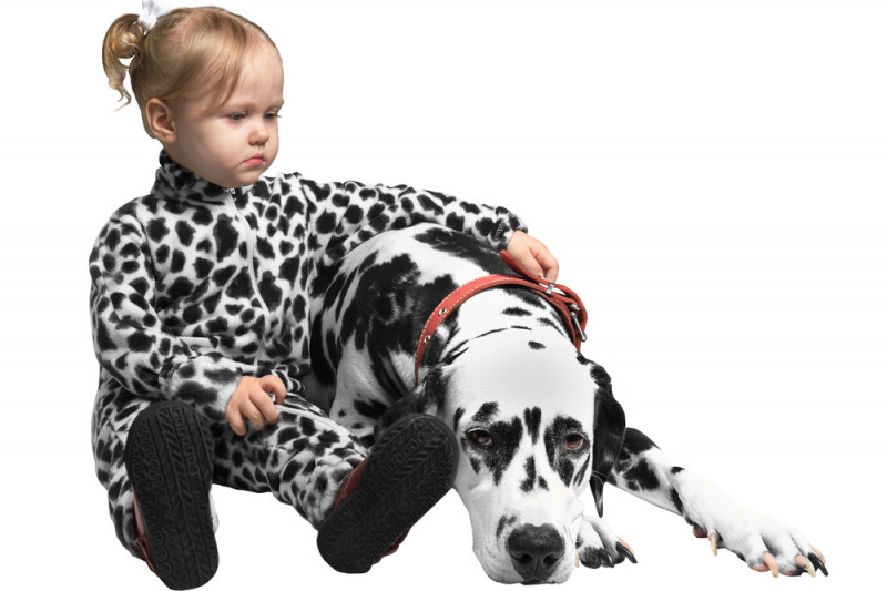 Come travestirsi e truccarsi da cane dalmata