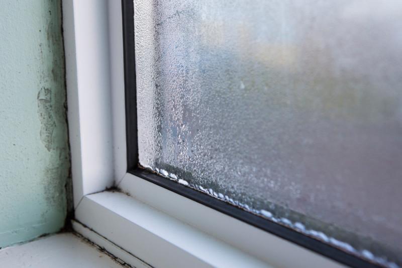 Come rimuovere la muffa intorno alle finestre