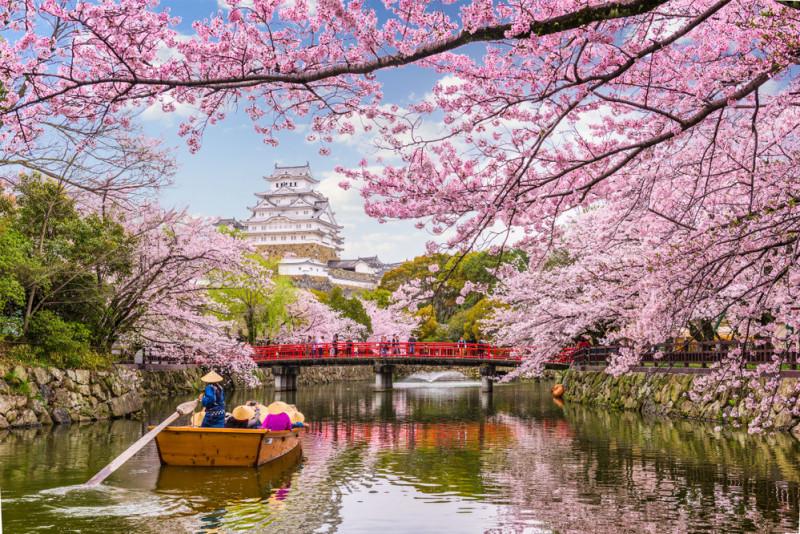 I migliori itinerari per un viaggio in primavera