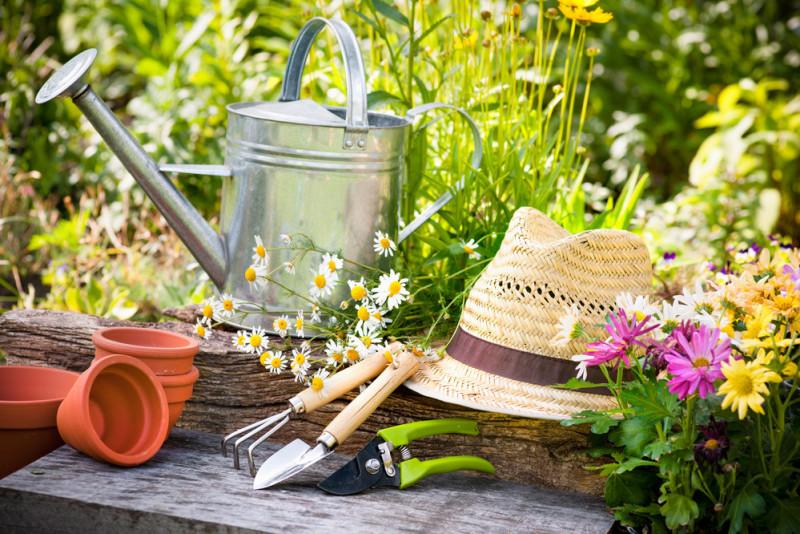 Come curare il giardino all'inizio della primavera