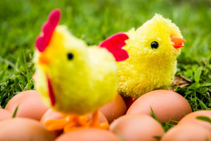 Come fare un pulcino in lana per Pasqua