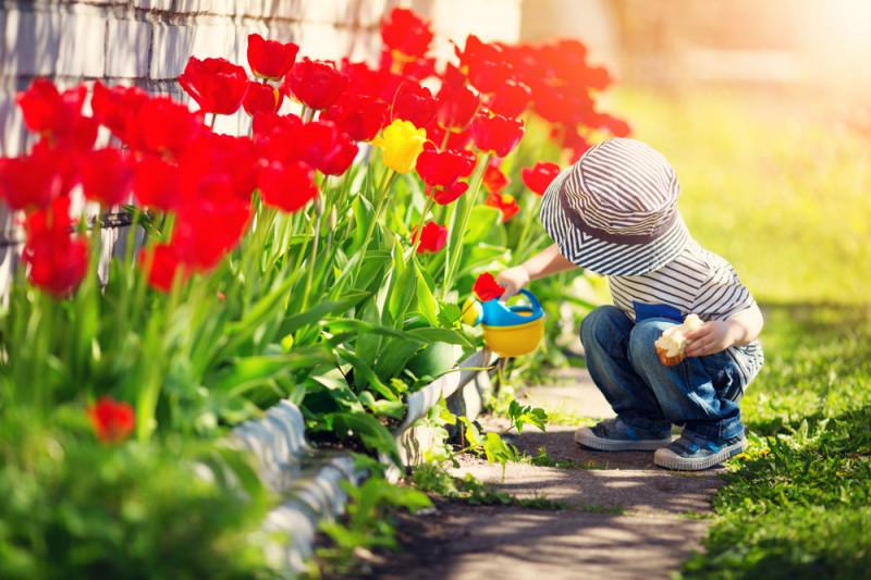 Decorare il giardino idee per la primavera tutto per casa for Idee per il giardino