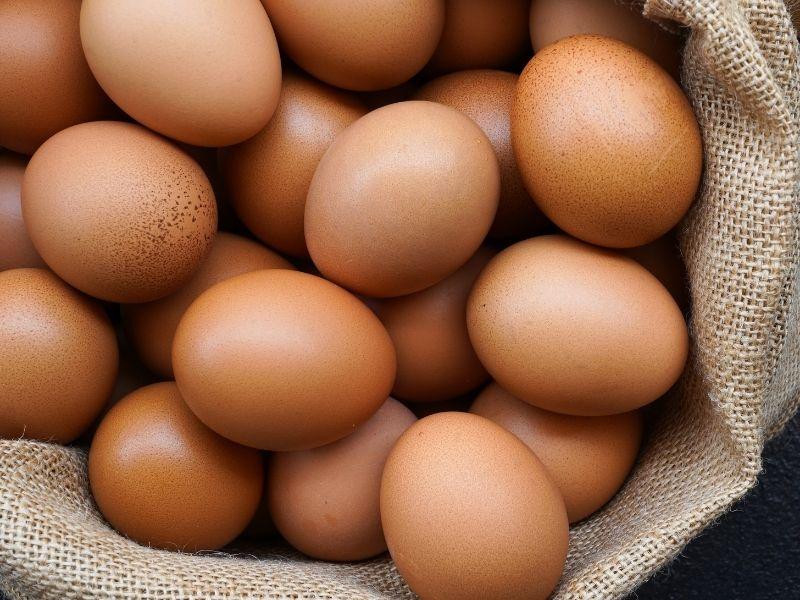 Come bollire l'uovo