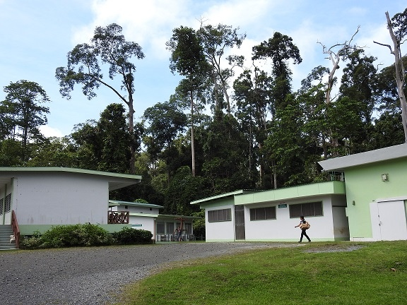 Clinic Area