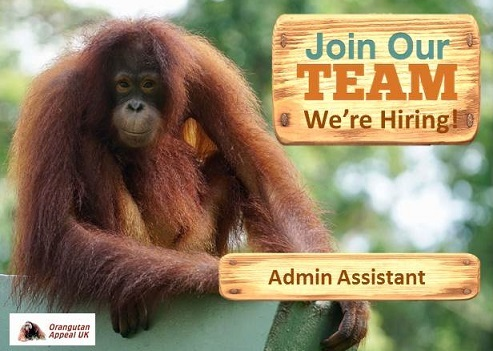 Join Our Team Admin Assistant