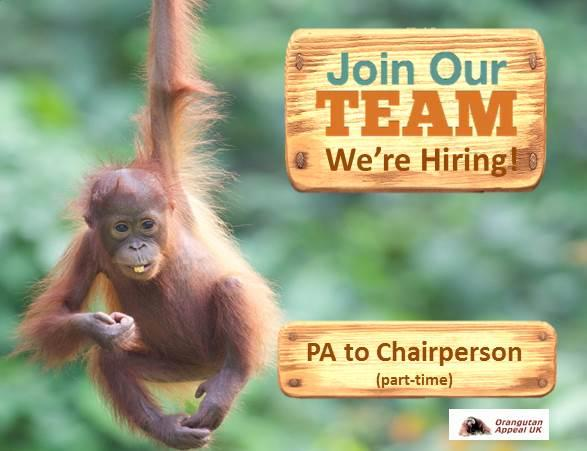 Join Our Team Pa To Chairperson